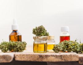 Der medizinische Nutzen von Cannabis und THC