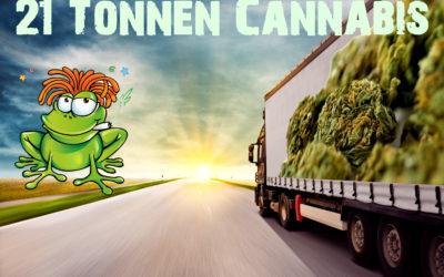 Cannabis-Einfuhr beantragt