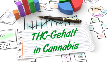 THC-Gehalt in Cannabis hat sich verdoppelt